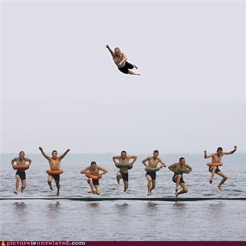beach,fly,group photo,wtf