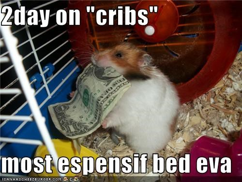 "2day on ""cribs""  most espensif bed eva"