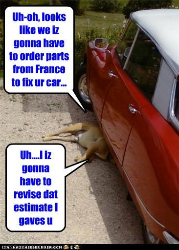 Uh-oh, looks like we iz gonna have to order parts from France to fix ur car...