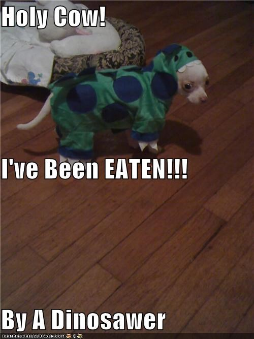 Holy Cow! I've Been EATEN!!! By A Dinosawer
