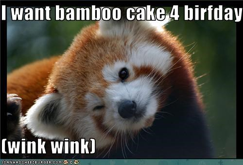 I want bamboo cake 4 birfday  (wink wink)