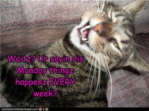 Waitz? Ur sayin dis Munday thingz happenz EVERY week?