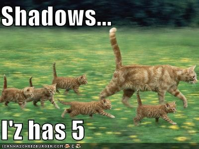 Shadows...  I'z has 5