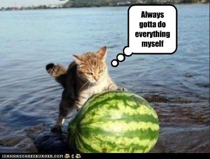 angry,watermelon,work
