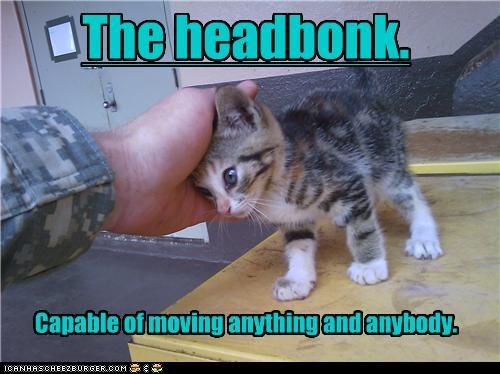 The headbonk.