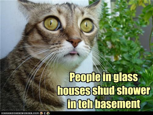 aghast,basement,best of the week,caption,captioned,cat,do not want,glass,Hall of Fame,horrified,houses,people,shower,suggestion,unsee
