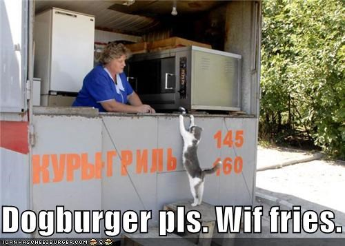 Dogburger pls. Wif fries.