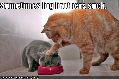 Sometimes big brothers suck.