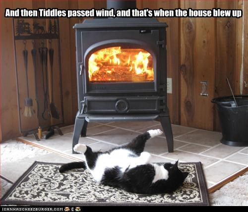 And then Tiddles passed wind, and that's when the house blew up