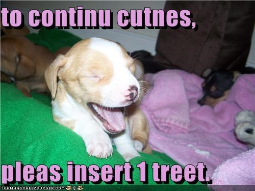 to continu cutnes,  pleas insert 1 treet.