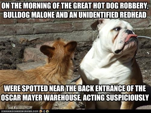 ON THE MORNING OF THE GREAT HOT DOG ROBBERY, BULLDOG MALONE AND AN UNIDENTIFIED REDHEAD         WERE SPOTTED NEAR THE BACK ENTRANCE OF THE OSCAR MAYER WAREHOUSE, ACTING SUSPICIOUSLY .