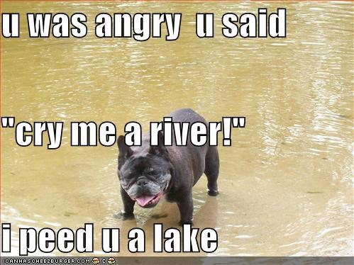 "u was angry  u said  ""cry me a river!"" i peed u a lake"