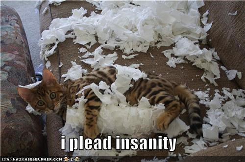 i plead insanity