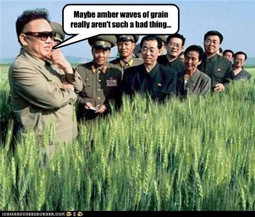 Maybe amber waves of grain really aren't such a bad thing...