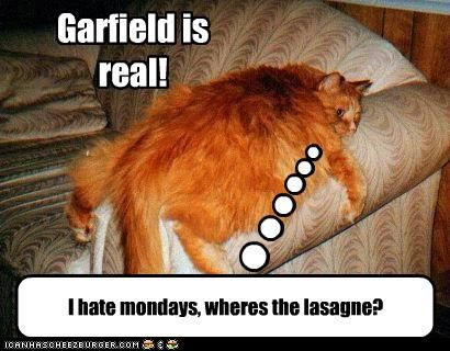 Garfield is real!