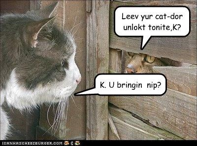Leev yur cat-dor unlokt tonite,K?