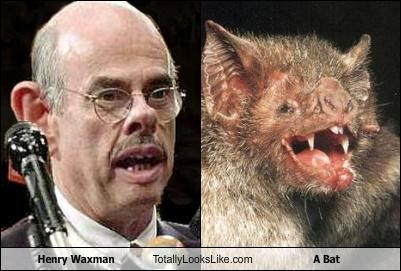 Henry Waxman Totally Looks Like A Bat