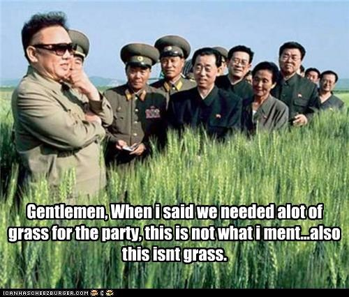 Gentlemen, When i said we needed alot of grass for the party, this is not what i ment...also this isnt grass.