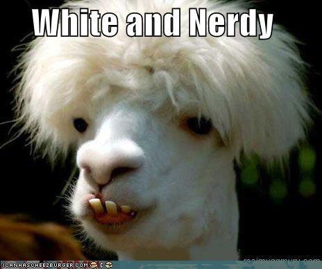 alpaca,critters,llama,napoleon dynamite,weird al