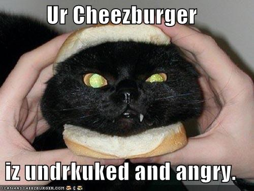 Ur Cheezburger  iz undrkuked and angry.
