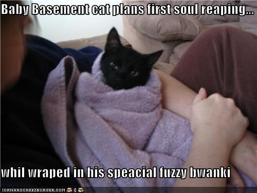 Baby Basement cat plans first soul reaping...  whil wraped in his speacial fuzzy bwanki