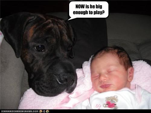 NOW is he big enough to play?