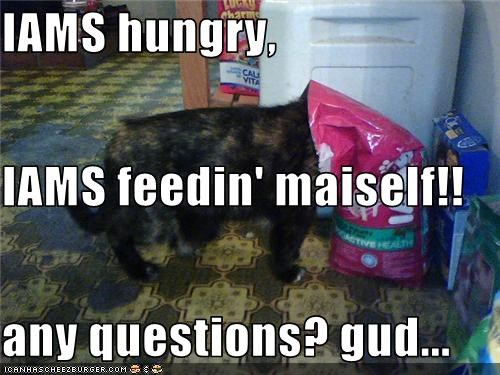 IAMS hungry, IAMS feedin' maiself!! any questions? gud...