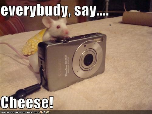 everybudy, say....  Cheese!