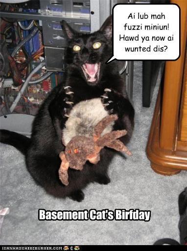 Basement Cat's Birfday