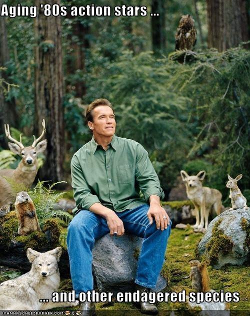 Arnold Schwarzenegger,funny,lolz,Republicans,staged