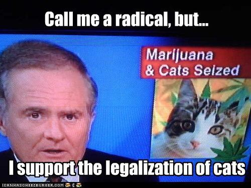 I support the legalization of cats