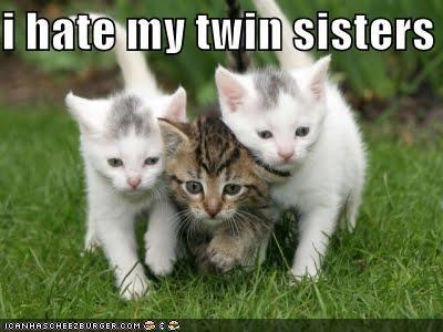 i hate my twin sisters