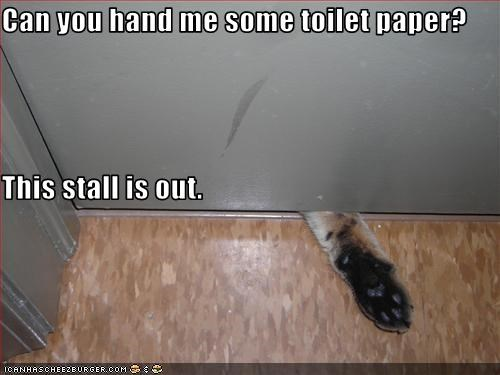 Can you hand me some toilet paper? This stall is out.