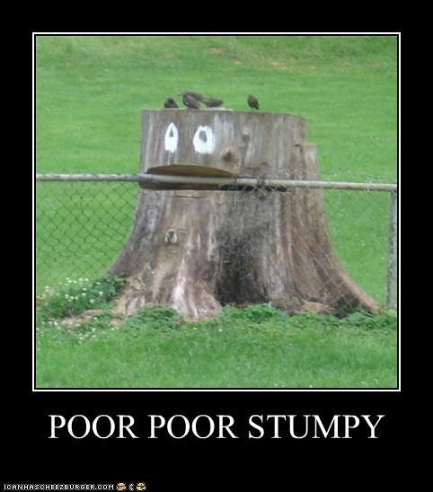 POOR POOR STUMPY