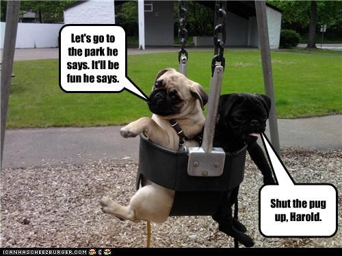 Shut the pug up