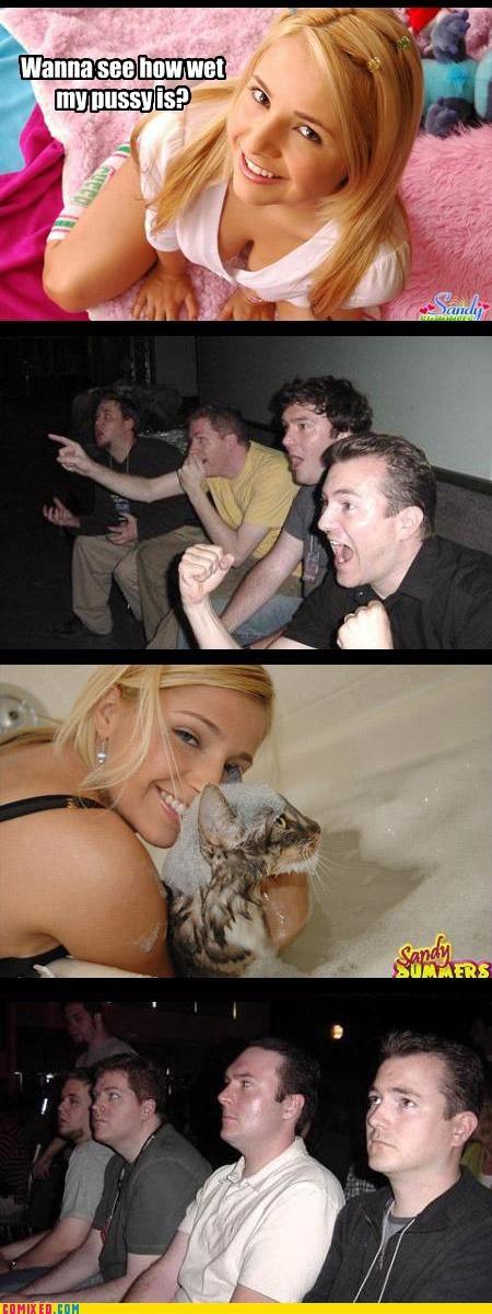 babe,Cats,puns,reaction guys,sex,wet