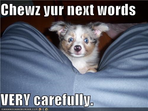 Chewz yur next words  VERY carefully.