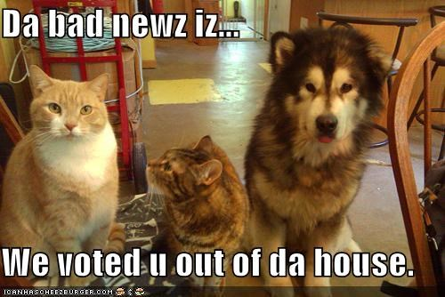Da bad newz iz...  We voted u out of da house.