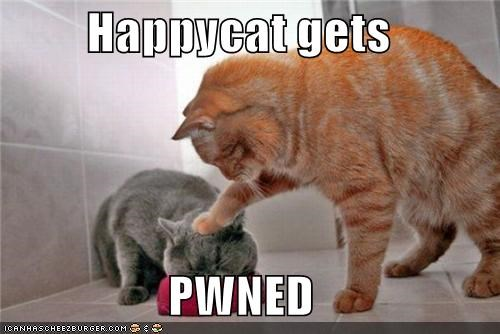 Happycat gets  PWNED