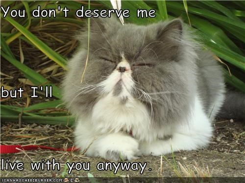You don't deserve me but I'll  live with you anyway.