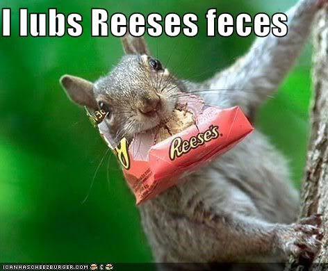 I lubs Reeses feces