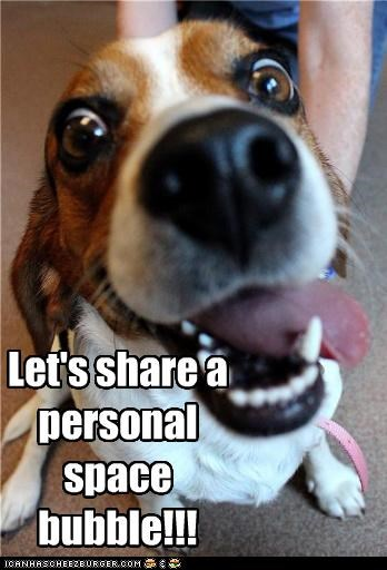Let's share a personal space bubble!!!
