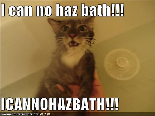 I can no haz bath!!!  ICANNOHAZBATH!!!