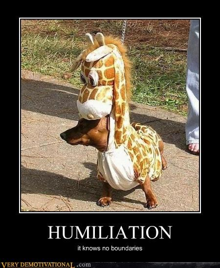 animals,costume,dachshund,dogs,giraffes,humiliation,Mean People