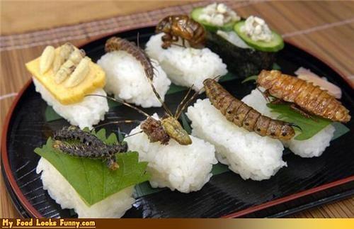 bizarre,bugs,gross,protein,rice,sushi