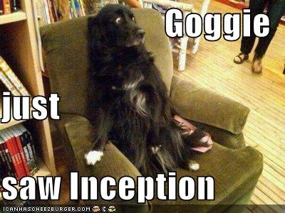 Goggie just saw Inception