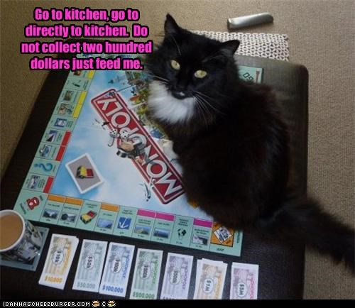 200,caption,captioned,cat,collect,Command,destination,do not,dollars,feed me,go,just,kitchen,monopoly