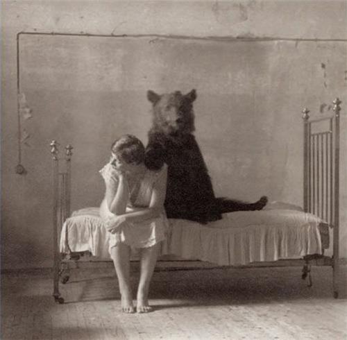 bears,bed,bestiality,Sad,wtf
