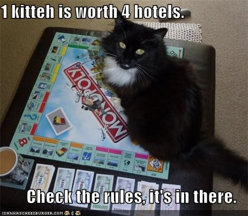1 kitteh is worth 4 hotels.  Check the rules, it's in there.