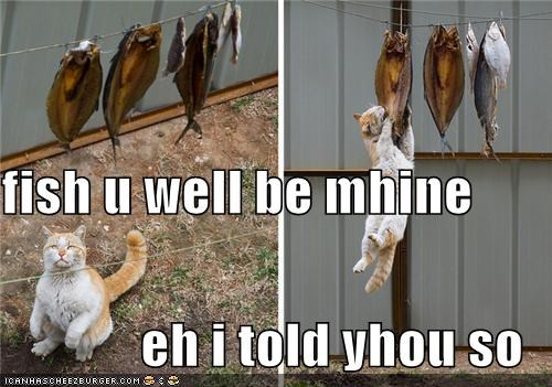 fish u well be mhine eh i told yhou so